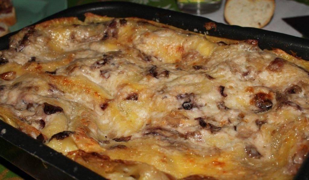 lasagne gorgonzola e radicchio