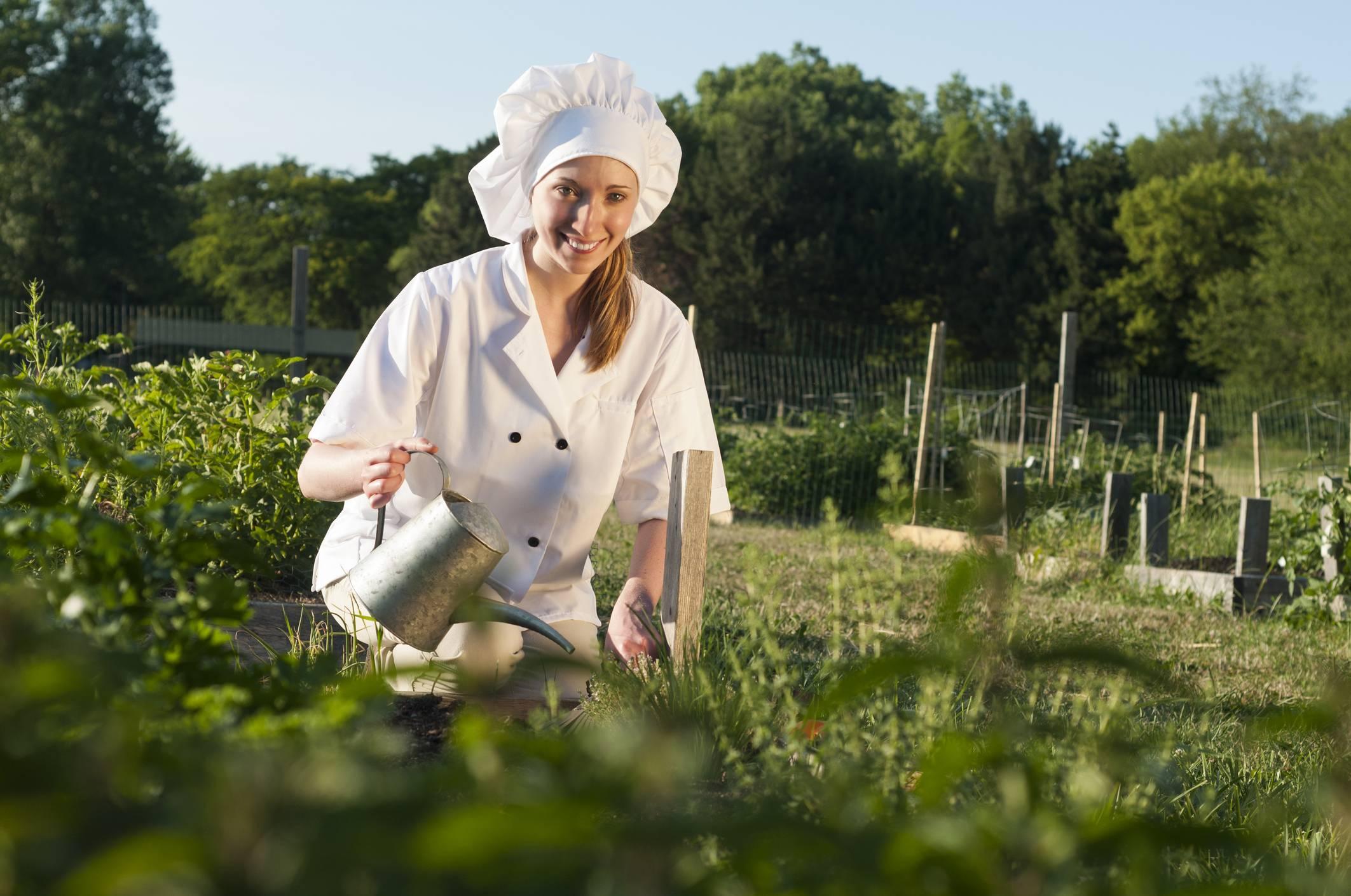 Culinary Gardener, chi c'è dietro uno chef stellato