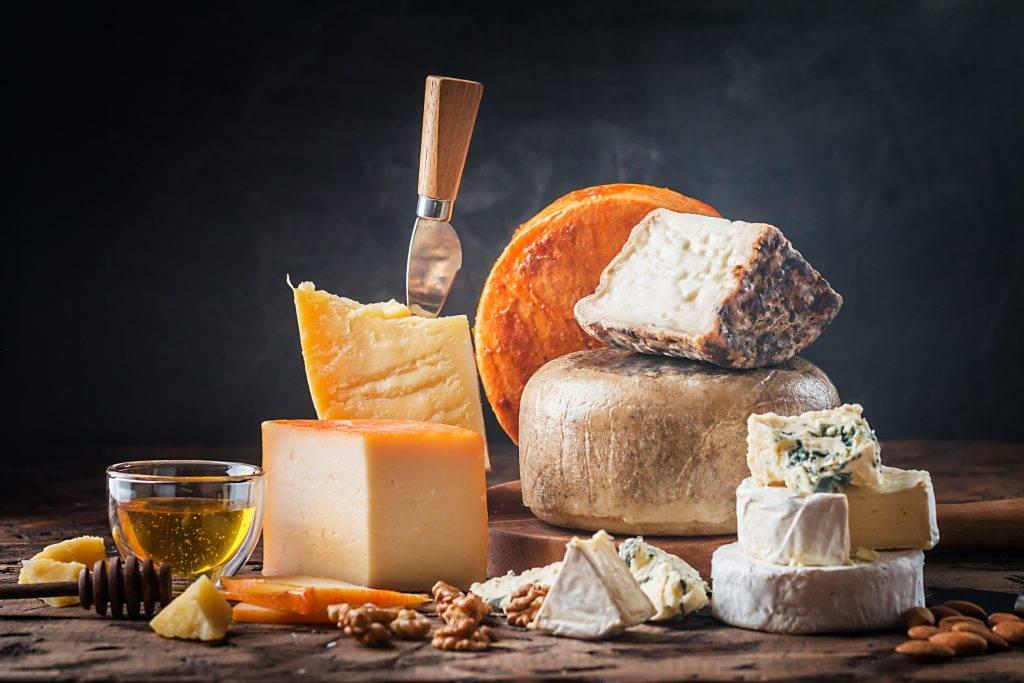 Allarme Escherichia Coli nei formaggi