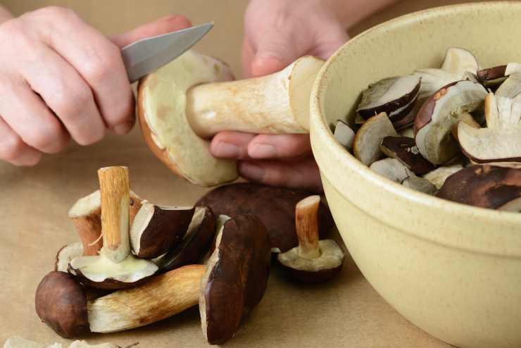 Risotto ai funghi porcini con crema di pistacchi - ricettasprint