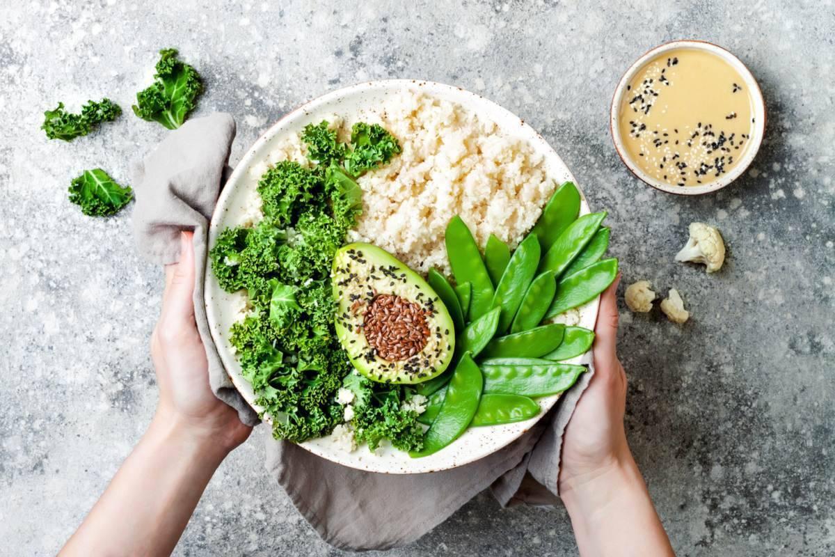 dieta di avocado del dottor boliote