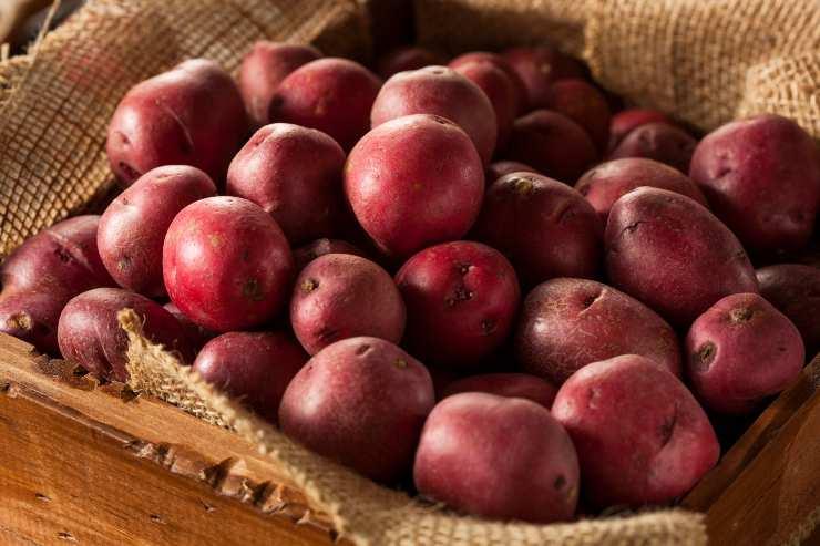 Gnocchi di patate perfetti - ricettasprint