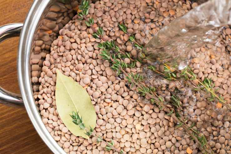 Lenticchie in umido con aromi - ricettasprint