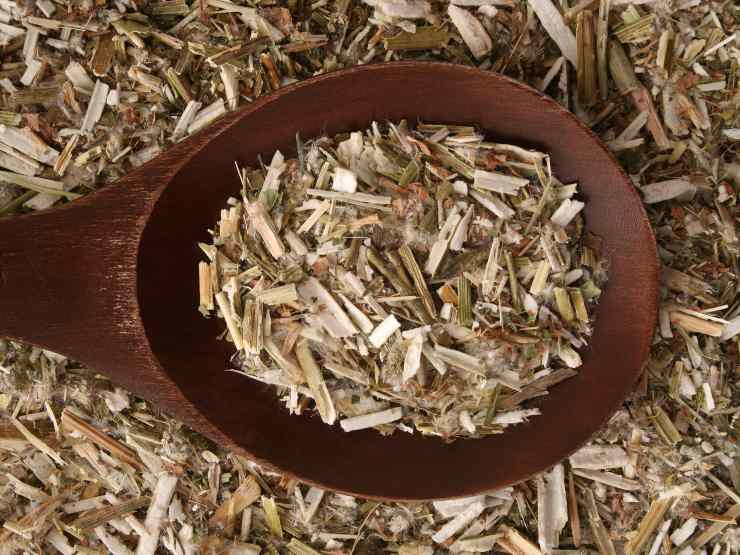 tisana depurativa al tiglio e cicoria - ricettasprint