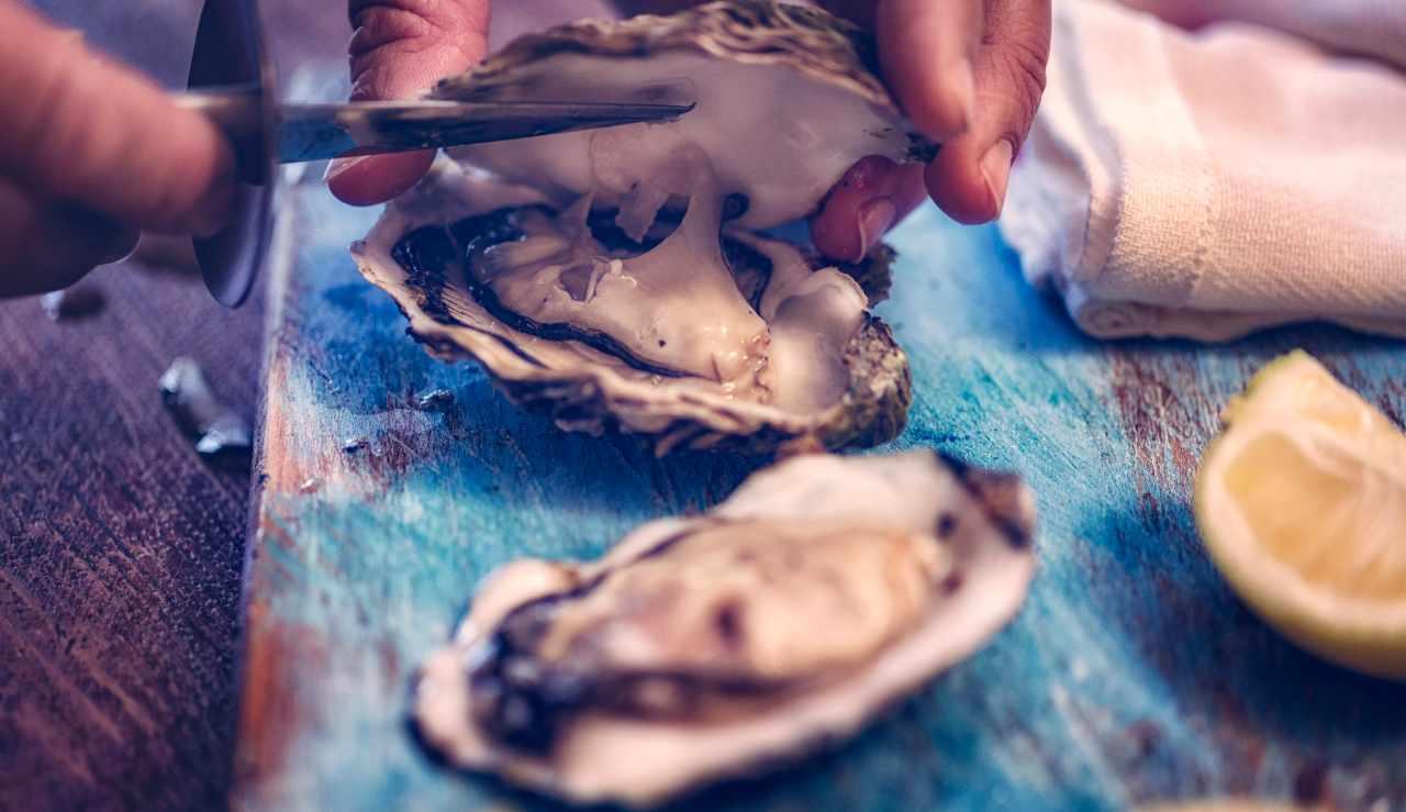 Allerta gastroenterite da ostriche - ricettasprint