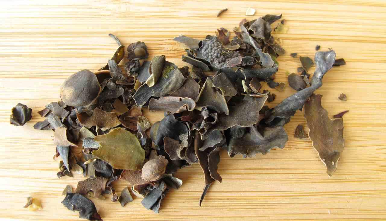 Arriva erba che fa dimagrire brucia i grassi più velocemente - ricettasprint