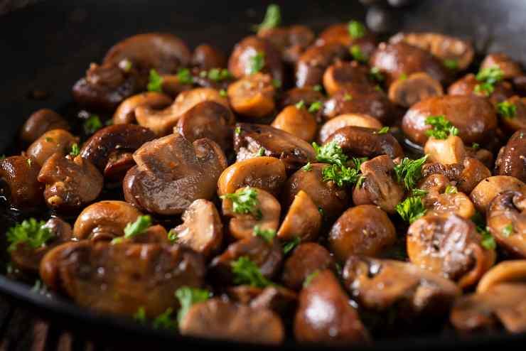 pasta ai funghi gratinata al forno - ricettasprint