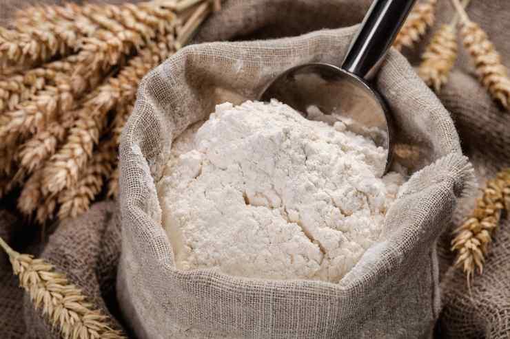 Pane con licoli cotto in pentola - ricettasprint(1)