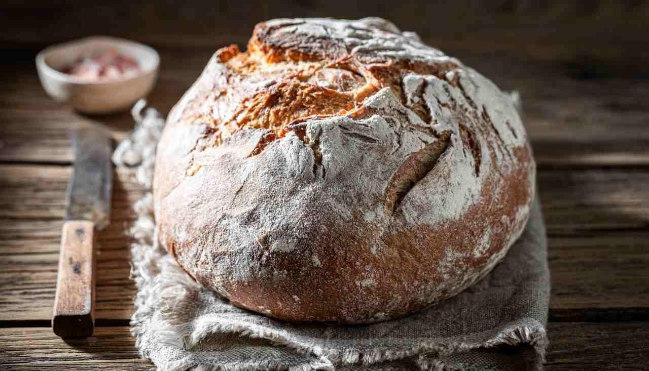Pane con licoli cotto in pentola - ricettasprint