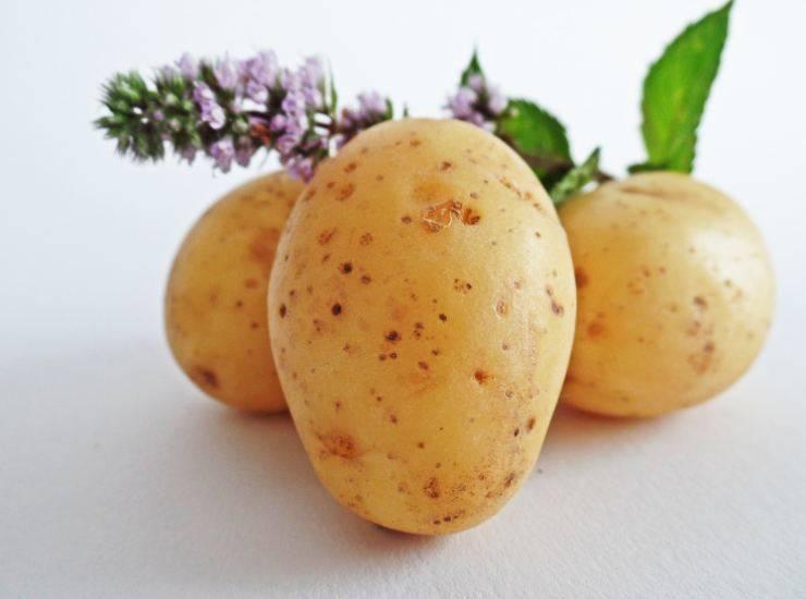 Bombe light al forno con patate dolci FOTO ricettasprint