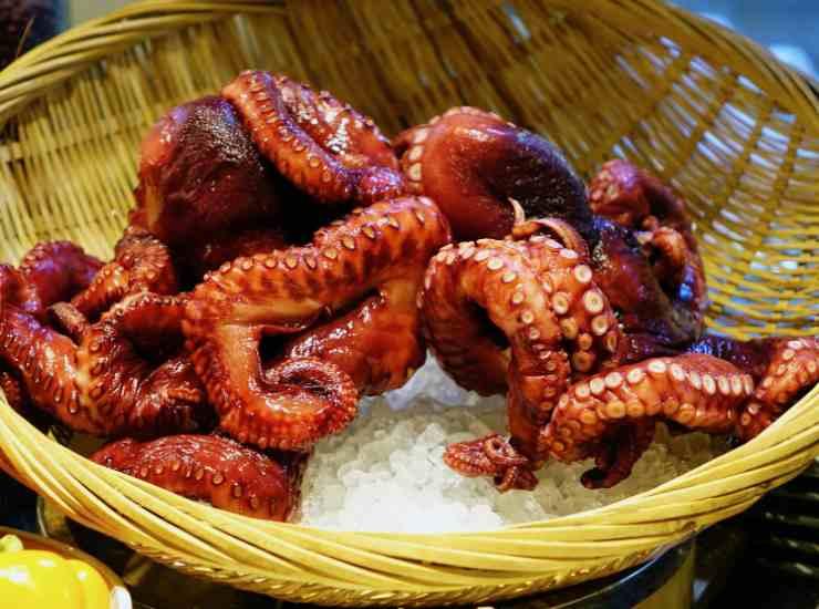 Polpo croccante in salsa agrodolce FOTO ricettasprint