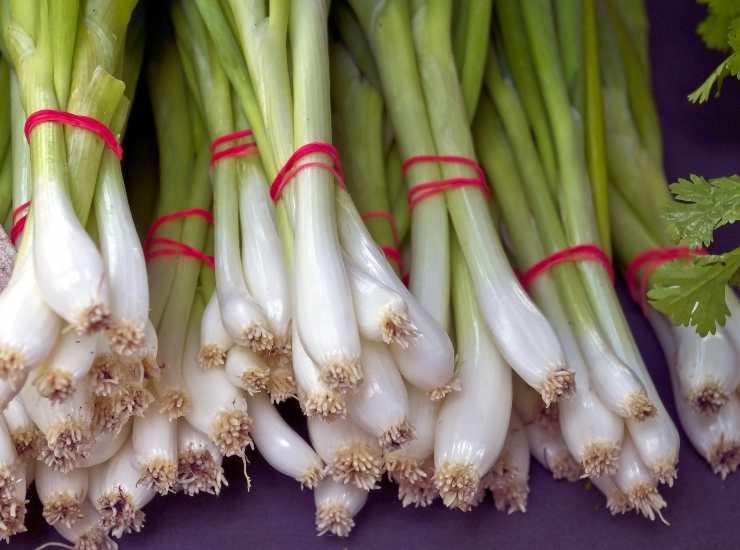 Polpette salsiccia e cipolla - ricettasprint