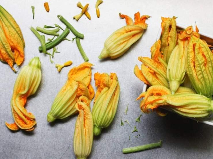 Parmigiana con zucchine e fiori di zucca