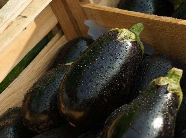 Pesto a base di melanzane e pinoli FOTO ricettasprint