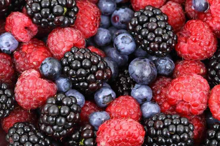 Torta golosa ai frutti di bosco FOTO ricettasprint