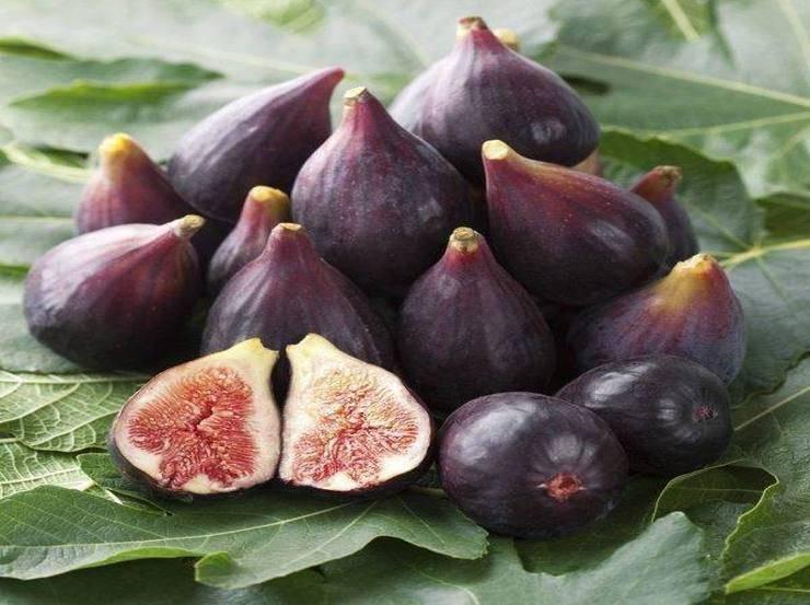 Marmellata di fichi ed uva r