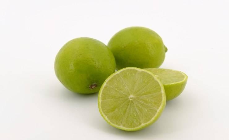 Liquore al limone verde