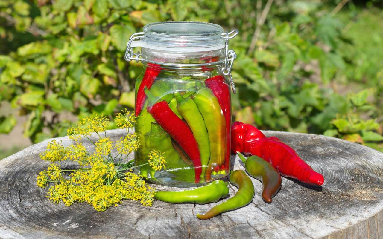 Conserva di ortaggi piccanti FOTO ricettasprint