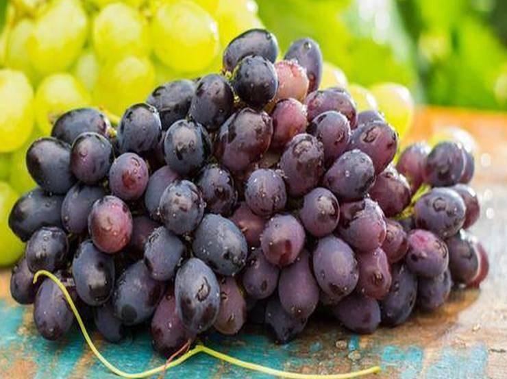 Dolce con uva