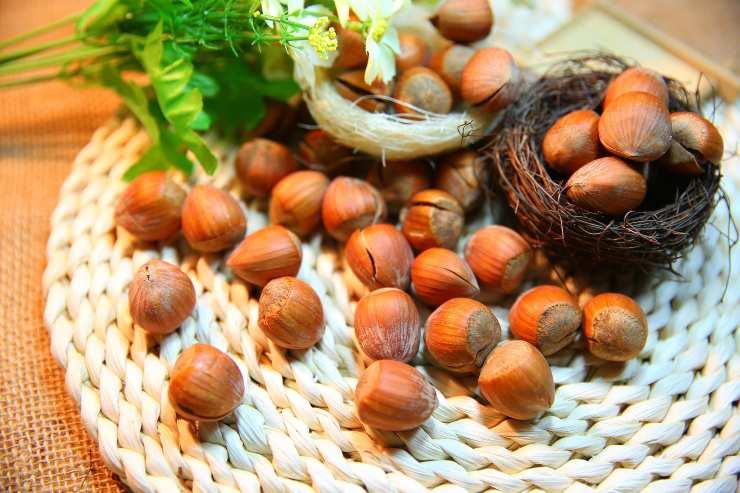 Dolce con grano saraceno e frutti rossi FOTO ricettasprint