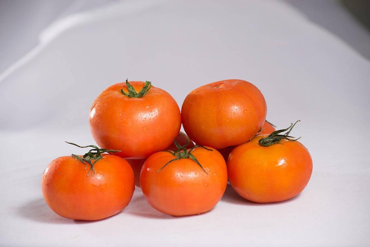 Pomodori con tonno
