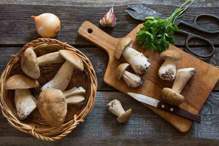 Zuppa cremosa di funghi porcini ricettasprint