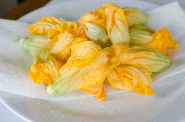 fiori di zucca sformatino