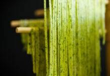 pasta verde fatta in casa