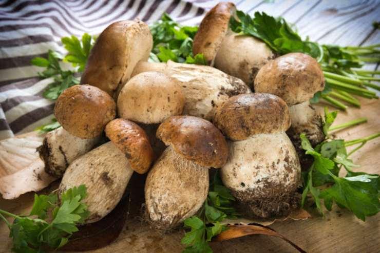 Pizzoccheri zucca e funghi FOTO ricettasprint