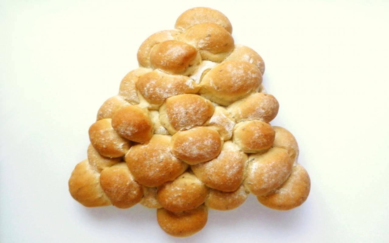 albero panini olio ricetta FOTO ricettasprint
