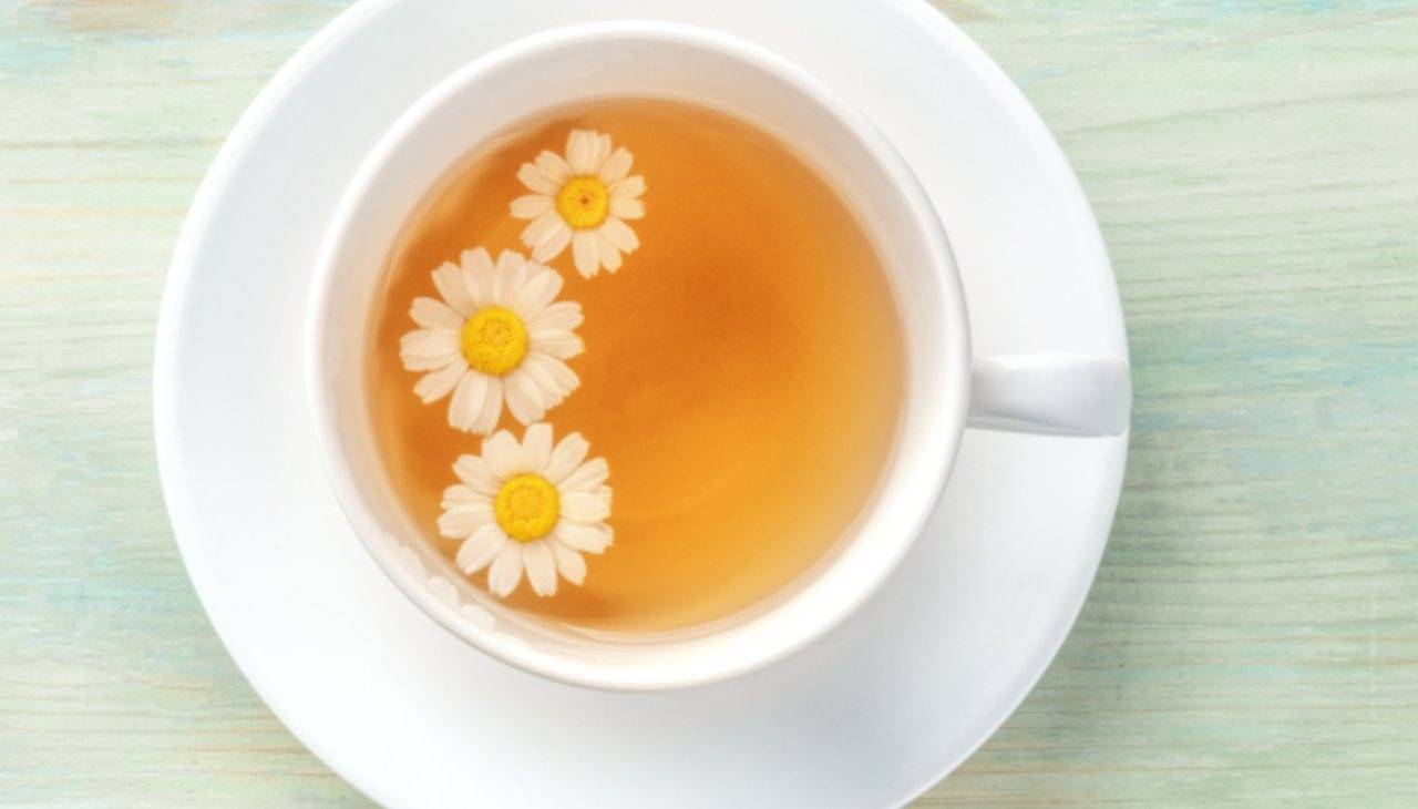 camomilla bevanda calda addolcita miele