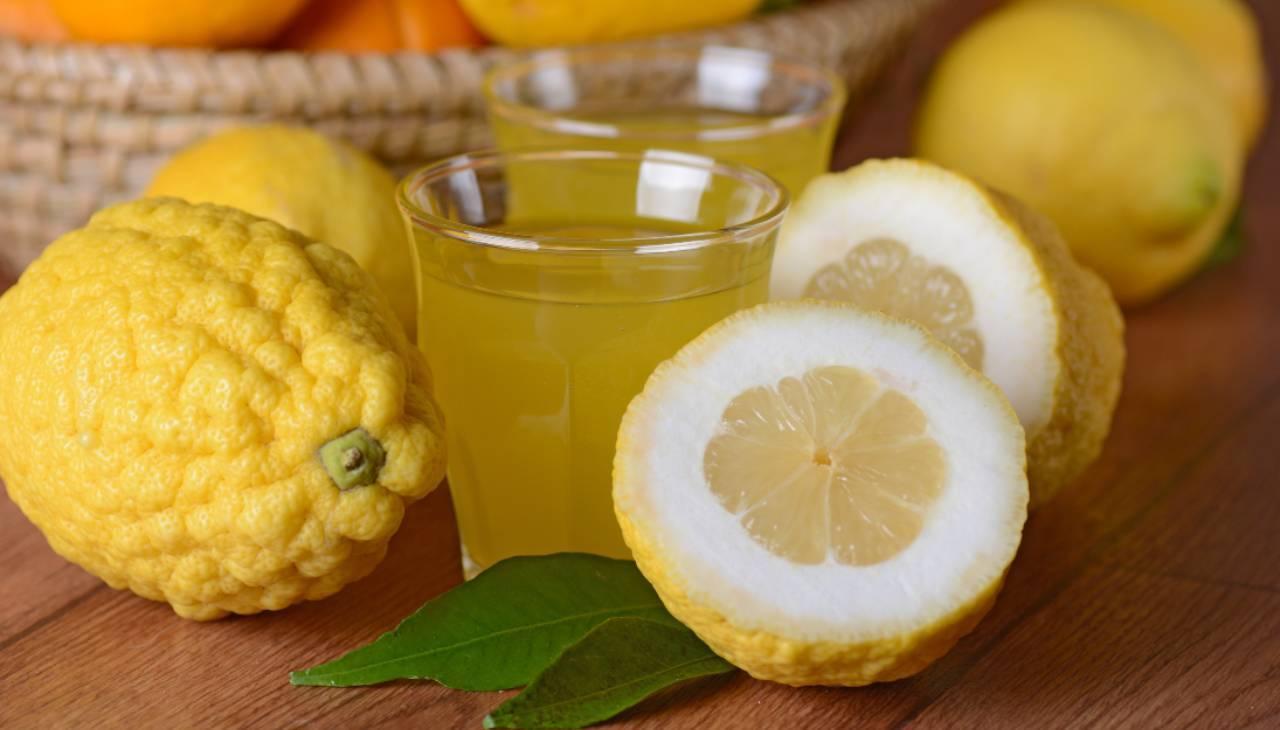 cedrata veloce frutto