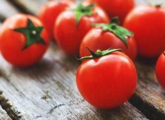 Il pomodoro non va conservato in frigo ecco cosa succede ricettasprint