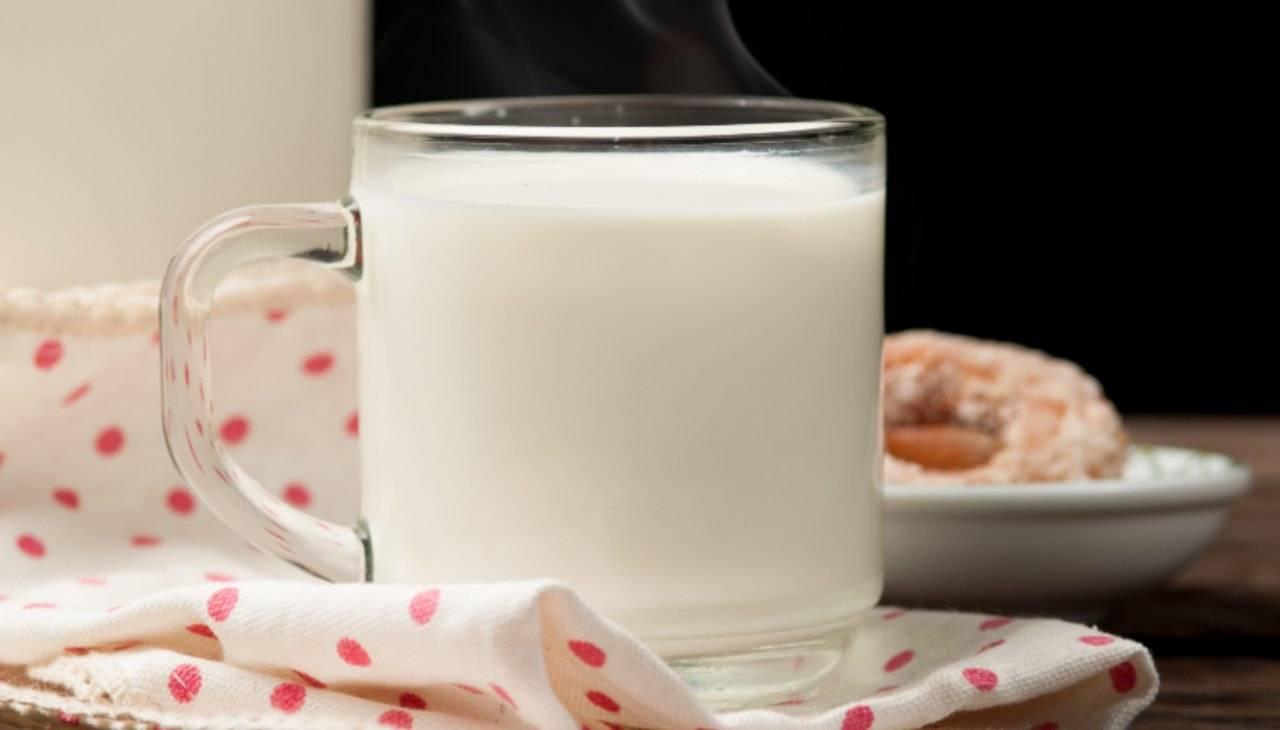 late bevanda calda miele eucalipo