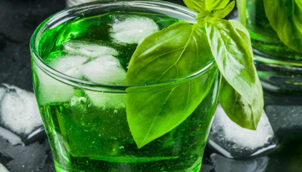 liquore erba aromatica digestivo