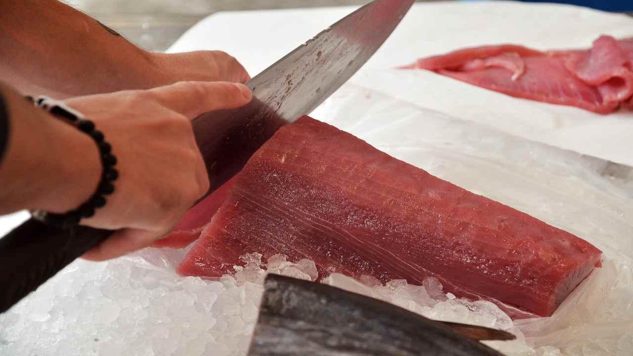 RASFF richiamo alimentare tonno