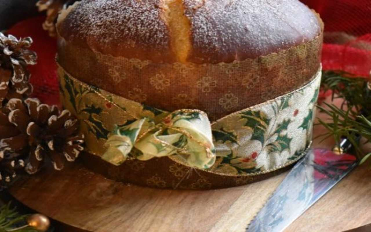 panettone salato no lievito ricetta FOTO ricettasprint