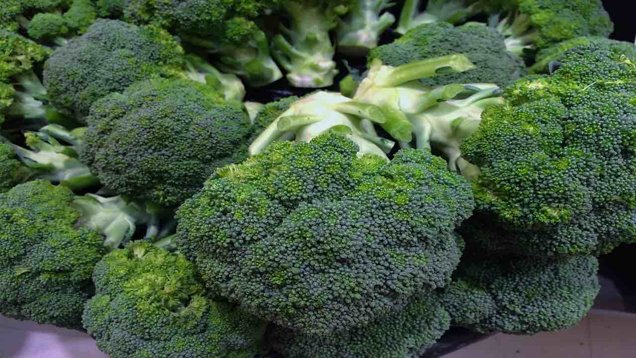 broccoli proprieta