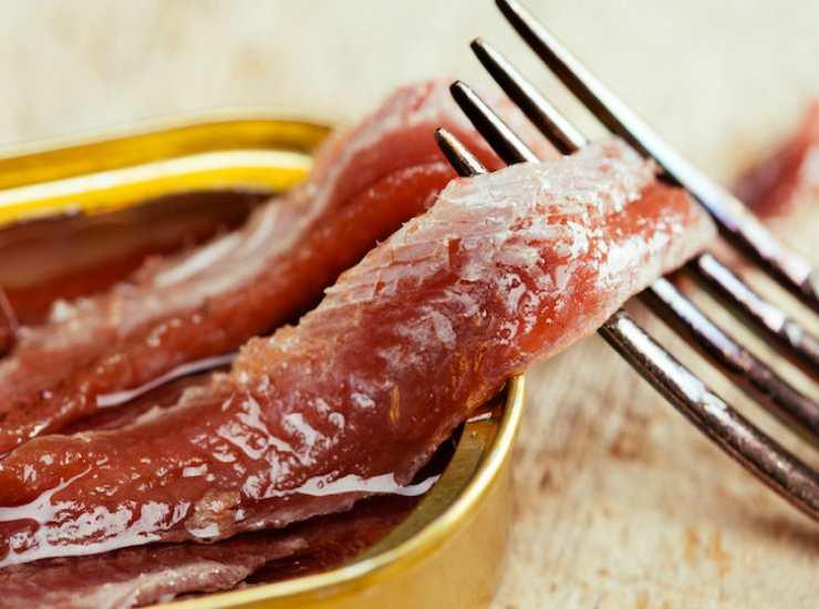 Barbabietole con acciughe FOTO ricettasprint