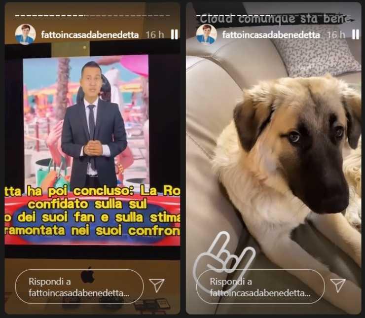 Benedetta Rossi stanca delle voci verità gossip ricettasprint