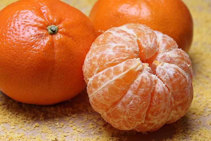 Crema pasticcera al mandarino FOTO ricettasprint