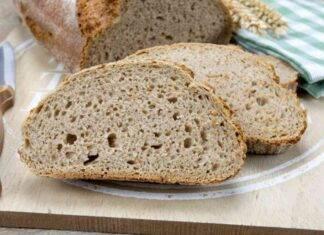 Pagnottina di pane senza impasto ricetta