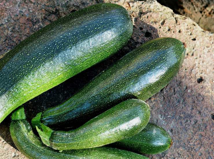 Pasta zucchine speck e zafferano FOTO ricettasprint