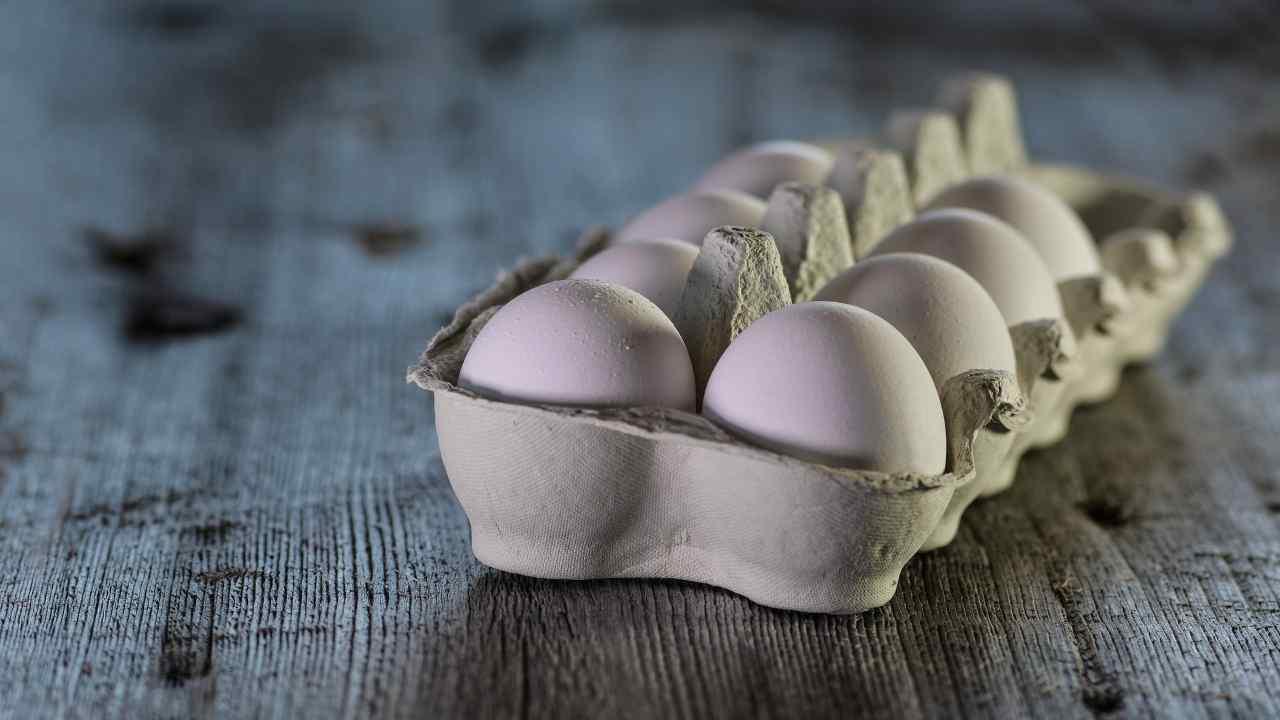 Salmonella nelle uova rischi