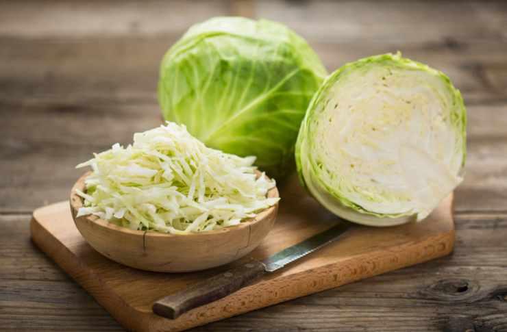 Involtini verza, formaggio e prosciutto FOTO ricettasprint