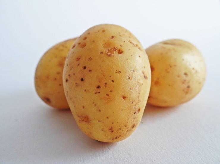 snack patate