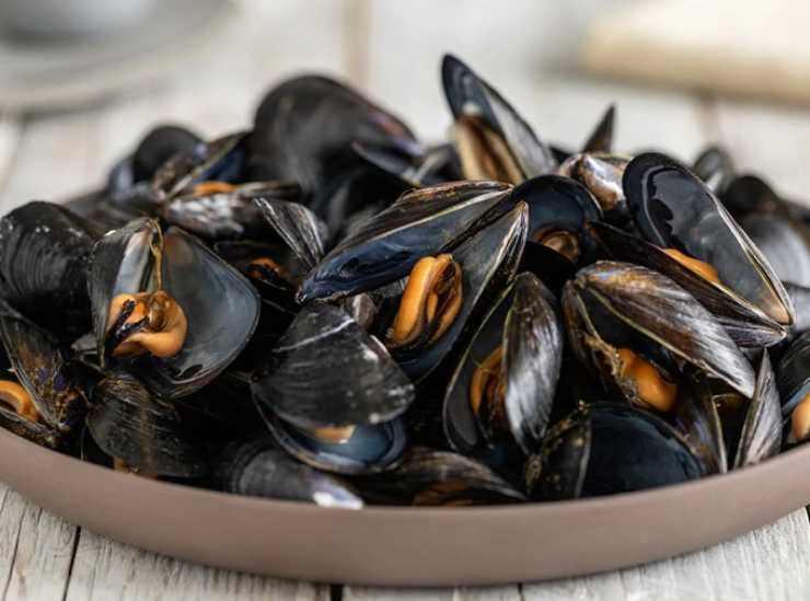 Risotto di mare con carciofi ricettasprint