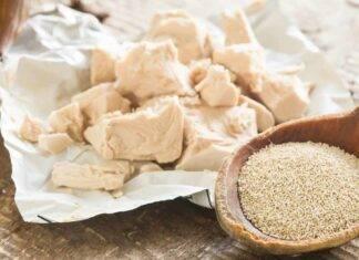 Tipi di lievito e come usarli ricettasprint