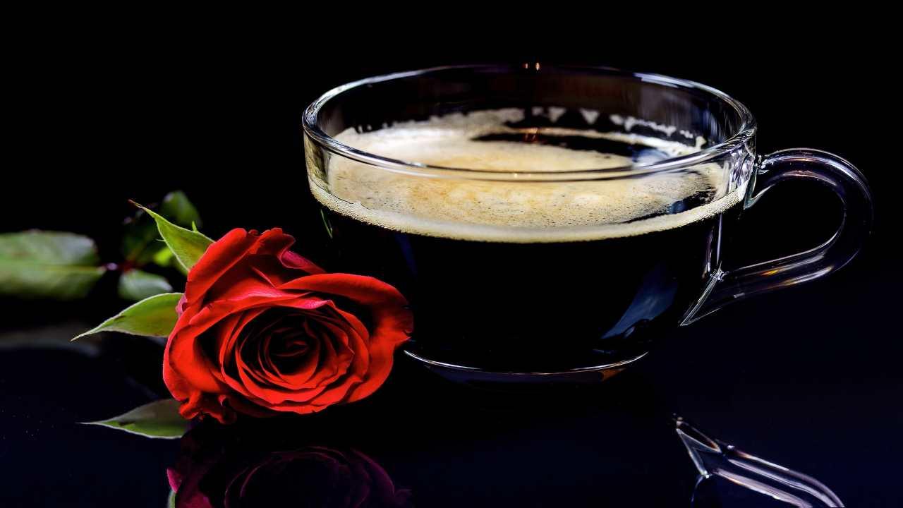 caffè in vetro tazzina