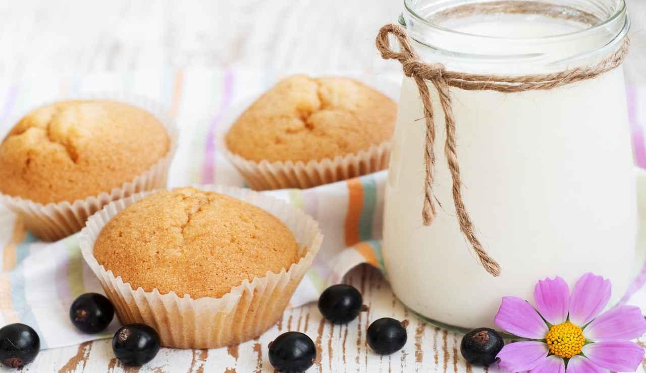 Muffin allo yogurt senza lattosio
